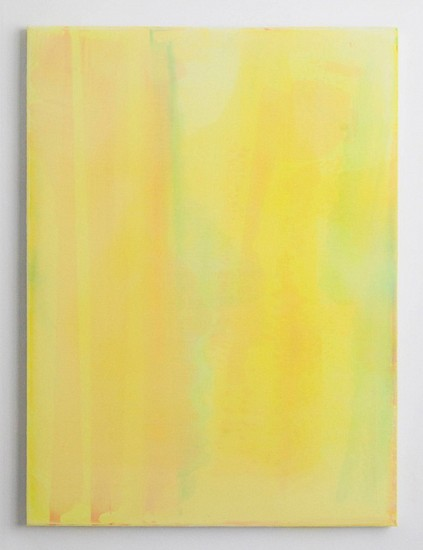 Jus Juchtmans ,   20120126  ,  2012     Acrylic on canvas ,  47 x 35.5 inches (120 x 90 cm)